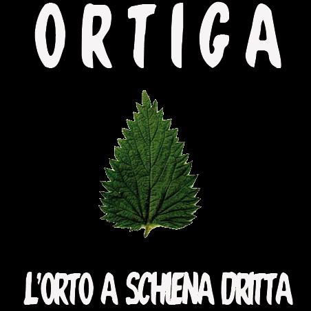ortiga-01